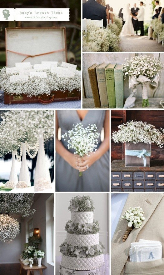 Elegant Wedding Flowers – Flower Meanings