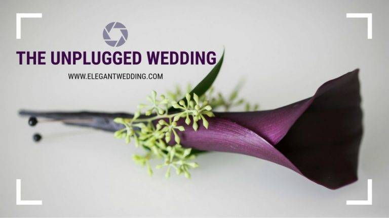 The Unplugged Wedding