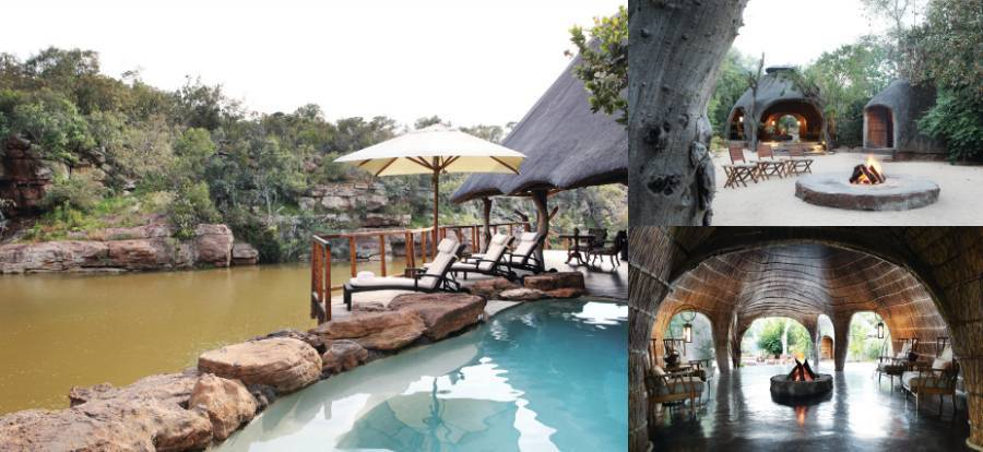The Best of South Africa   Urban Luxury and Safari Experience