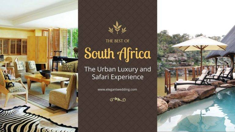 The Best of South Africa – Urban Luxury and Safari Experience
