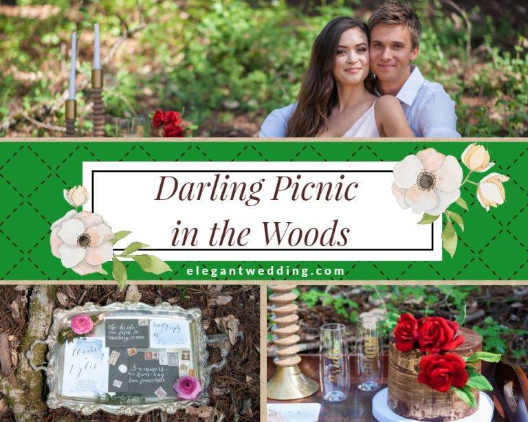 Darling Picnic in the Woods