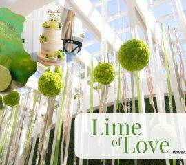 Lime of Love