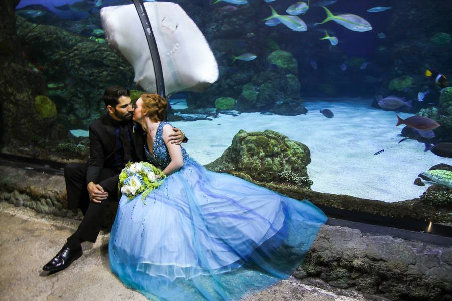 Under the Sea Wedding
